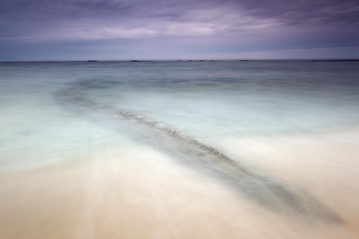 Casi viva. Punta Paloma. Tarifa (Cádiz)
