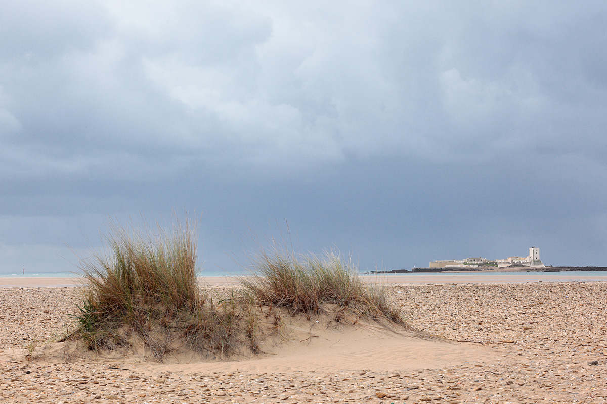 Punta del Boquerón. San Fernando (Cádiz)