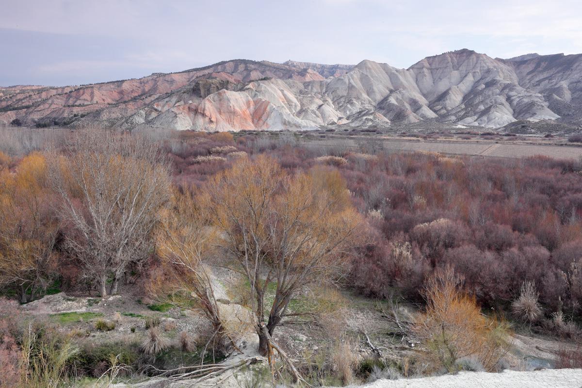 Panorámica de valle de Valdemanzanos